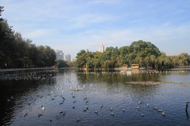 Cuihu-Park