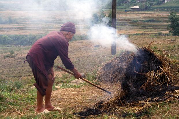 Local Rice Paddy Sapa Vietnam