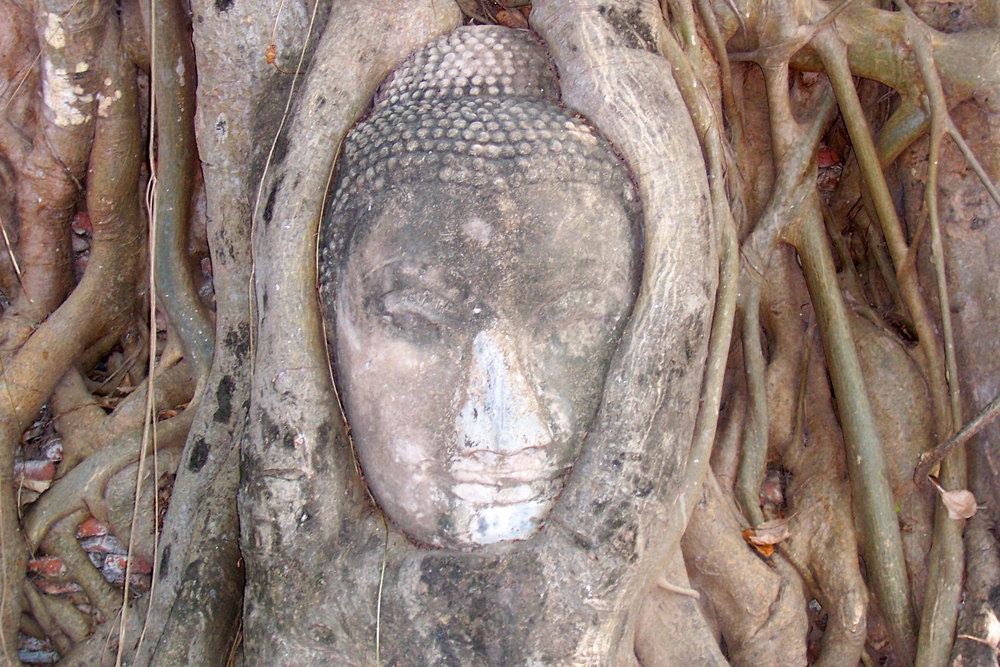 Wat Mahathat Ayutthaya Temples of Ayutthaya Thailand