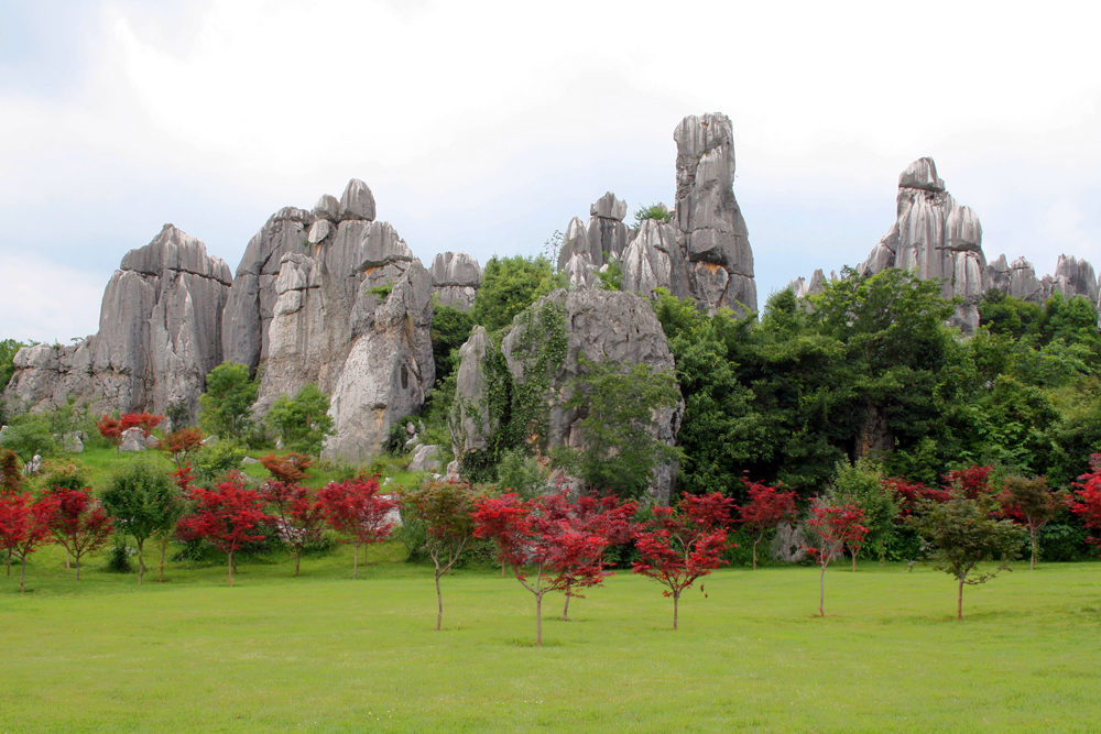 Shilin Stone Forest Kunming Yunnan China