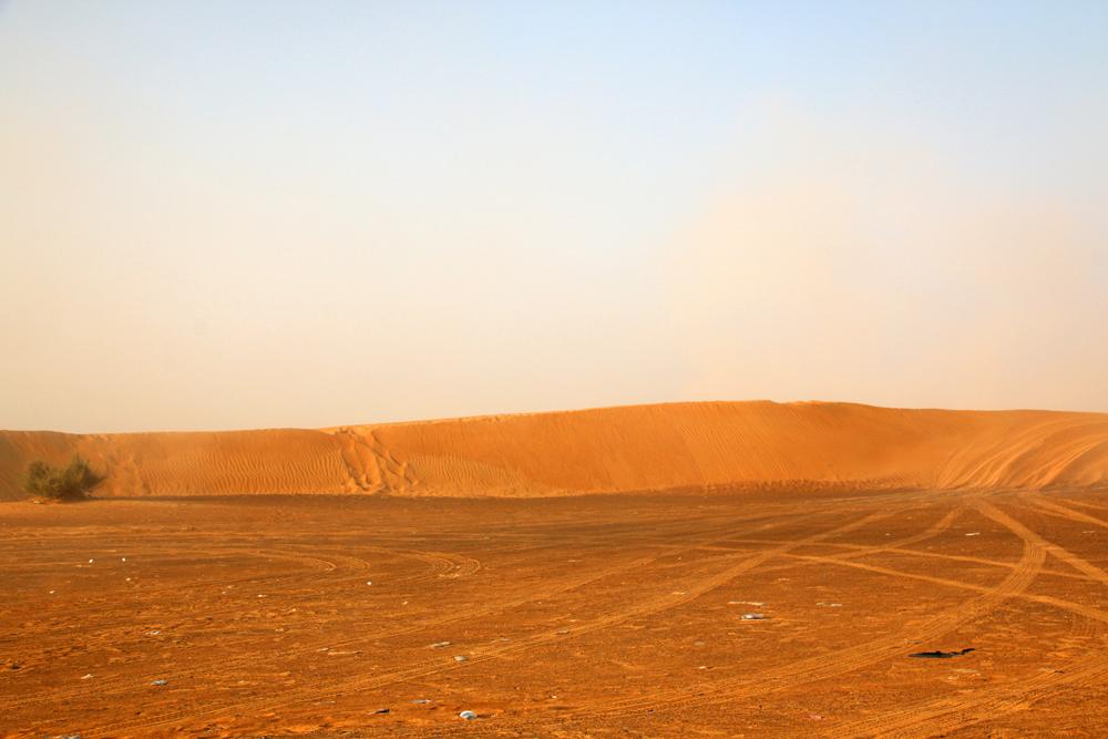 Eine Wüstensafari in Schardscha