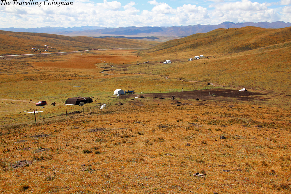 Reiseblogger-Reiserückblick 2017 Sangke-Grassland Xiahe Gansu China ASIEN